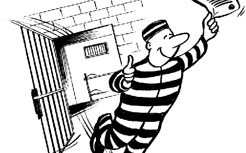 how to do bail application