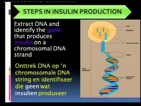 recombinant dna technology and its applications